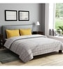 Grey Cotton Queen Size Bedsheet - Set of 3 by Rago