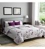 Rago Grey Poly Cotton Queen Size Bedsheet - Set of 3