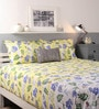 Lemon Cotton King Size Bed sheet - Set of 3 by Raymond Home