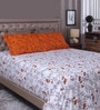 Raymond Home Orange & White 100% Cotton Queen Size Bed Sheet - Set of 3