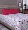 White & Red 100% Cotton Queen Size Bed Sheet - Set of 3 by Raymond Home