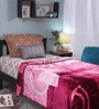 Multicolour Polyester Single Size Blanket by Raymond Home