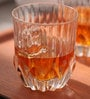 RCR Adagio Biccheri Acqua Dof Glass 350 ML Whisky Glass - Set of 6
