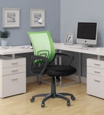 Regus Low Back Mesh Chair in Green Colour