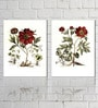 Retcomm Framed Multiple Canvas Paintings Red Colored Flower Petals with green leaves and yellow center buds