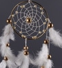 Rooh Multicolour Wool Pure Dream Catcher by Rooh Dream