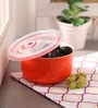 Royal Premium Orange Ceramic 600 ML Bowl with Lid
