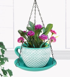 Sea Green  And White Terracotta Cup Saucer Hanging Planter