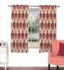 Skipper Maroon Viscose & Polyester 44 x 60 Inch Eyelet Window Curtain (Model No: 091930)