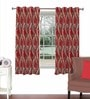 Skipper Maroon Viscose & Polyester 44 x 60 Inch Eyelet Window Curtain (Model No: 092617)