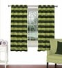 Multicolour Viscose & Polyester 44 x 60 Inch Eyelet Window Curtain (Model No: 089227) by Skipper