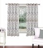 Multicolour Viscose & Polyester 44 x 60 Inch Eyelet Window Curtain (Model No: 092856) by Skipper