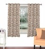 Skipper Rust Viscose & Polyester 44 x 60 Inch Eyelet Window Curtain (Model No: 090752)