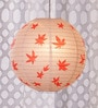 Printed Red Maple Leaf Paper Lantern by Skycandle