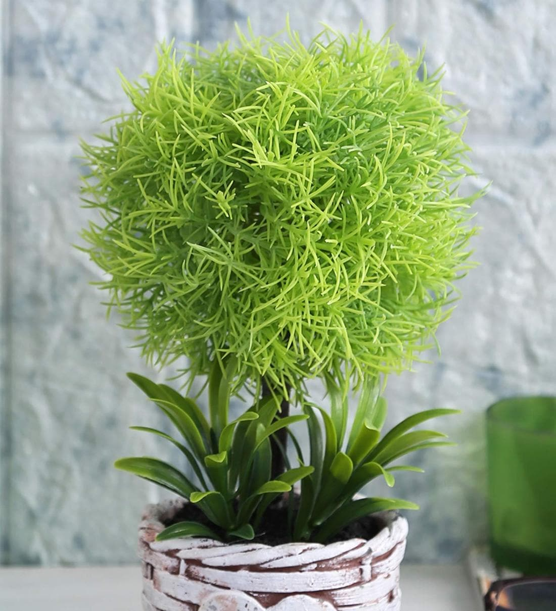 Buy Light Green Soft Touch Artificial Topiary Plant In A Ceramic Pot By Fourwalls Online Artificial Plants Artificial Plants Home Decor Pepperfry Product