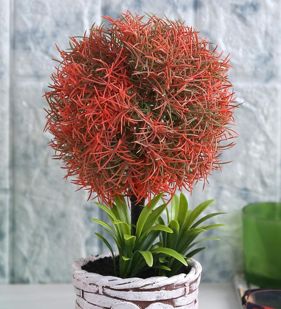 Buy Red Soft Touch Artificial Topiary Plant In A Ceramic Pot By Fourwalls Online Artificial Plants Artificial Plants Home Decor Pepperfry Product