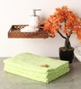Green Cotton 20 x 39 Hand Towel - Set of 3 by Softweave