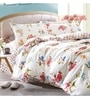 Multicolour 100% Cotton Queen Size Bedsheet - Set of 3 by Spread