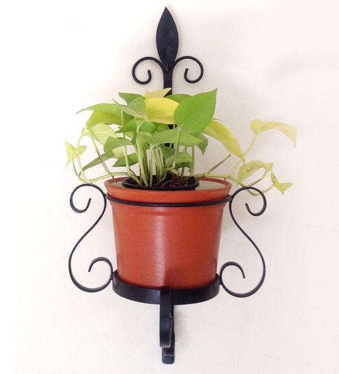 Buy Veneto Black Metal Wall Planter With Terracotta Ceramic Pot By