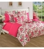 Pink Cotton Queen Size Bedding Set - Set of 4 by Swayam