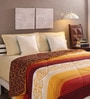Brown & Beige Cotton Queen Size Comforter by Tangerine