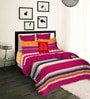 Tangerine Fete Multicolour Cotton 90x108 INCH Duvet Cover