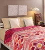 Tomatillo Multicolour Cotton Queen Size Comforter