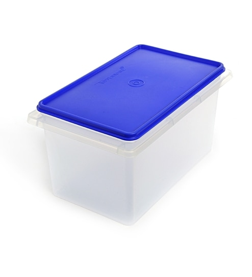Buy Tupperware Rectangular RiceAtta Keeper 5000 ML with blue color