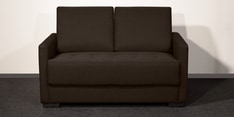 Two Seater Sofa in Brown Colour