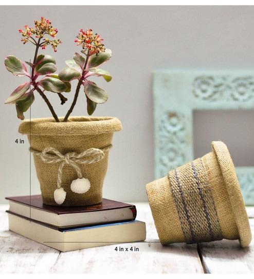 Beige Plastic Jute Indoor Flowers Pots Set Of 2 By Untold Homes