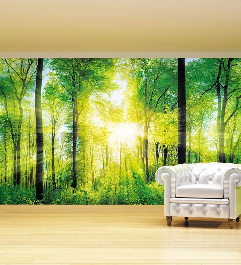 Green Non Woven Paper Sunrays Through Forest Wallpaper by Wallskin