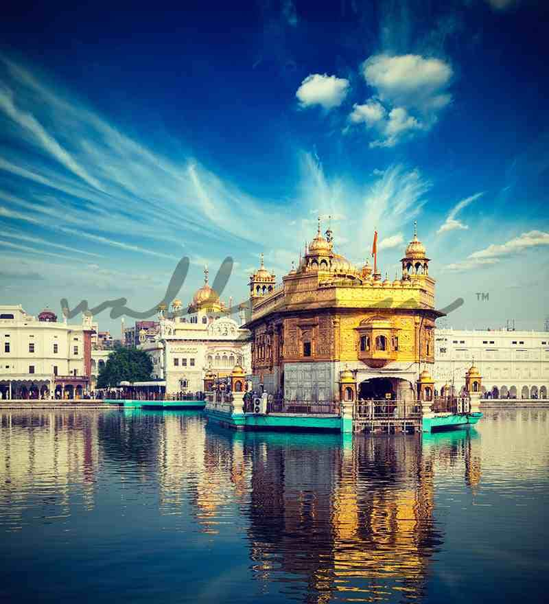 Buy Wallskin Mystical Golden Temple Yellow PVC Wallpaper