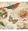Wall Decor Canvas 24 x 24 Inch Bird Frame Framed Art Print