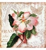 Wall Decor Canvas 24 x 24 Inch Pink Flower Framed Digital Art Print