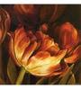 Wall Decor Orange Canvas 24 x 24 Inch Flower Framed Digital Art Print
