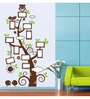 PVC Vinyl Owl Photo Tree Wall Sticker by WallTola
