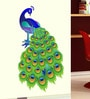 PVC Vinyl Slender Peacock Design Wall Sticker by WallTola