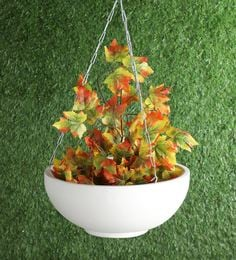 Pepperfry & Buy Hanging Flower Pots and Indoor Planters Online in India ...