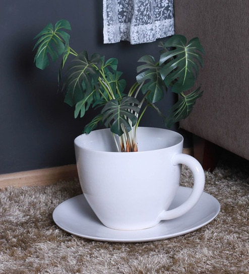 Buy White Ceramic Cup Saucer Planter By Decardo Online Pots