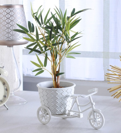 Buy White Plastic Tricycle Decorative Flower Vase by Fourwalls Online - Resin Vases - Vases - Decor - Pepperfry Product  sc 1 st  Pepperfry & Buy White Plastic Tricycle Decorative Flower Vase by Fourwalls ...