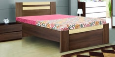 Woody Single Bed in Acacia Dark & Maple Finish