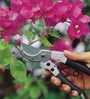 Wonderland Heavy Duty Bypass Pruning Shears
