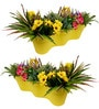 Set of Two : 2 Feet Long Railing Planters in Yellow by Wonderland