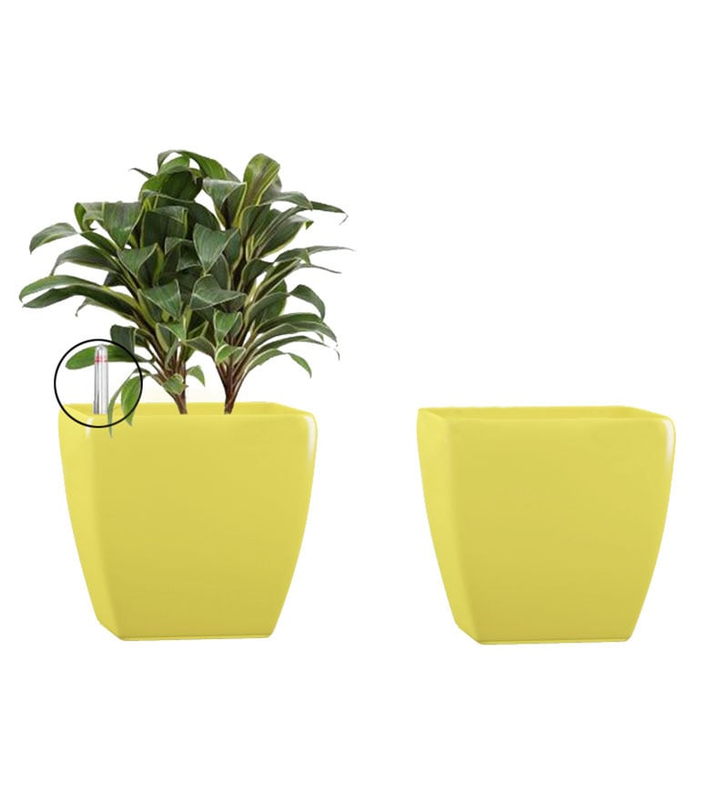 Combo for 2 Stella (Yellow Self Watering Planter) by Yuccabe Italia