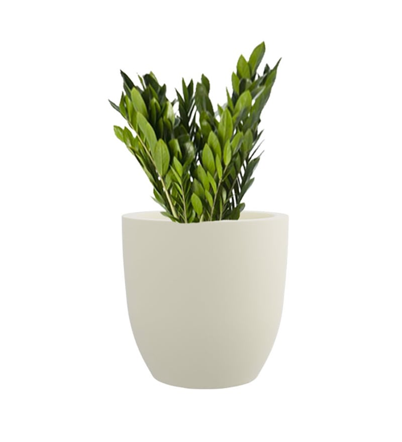 White P Cup Small Planter by Yuccabe Italia